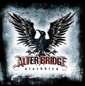 11-blackbird